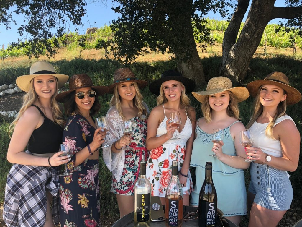 WINE SAFARI 1