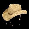 hattie pgd9738 nat 2