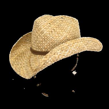 hattie pgd9738 nat 3